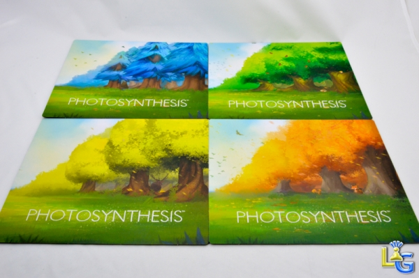 Photosynthesis - 9